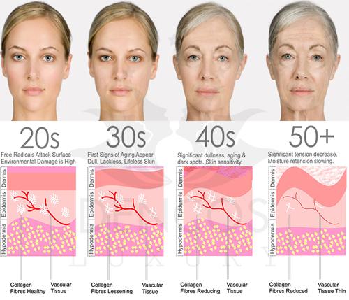 Collagen suy giảm về số lượng và chất lượng theo độ tuổi